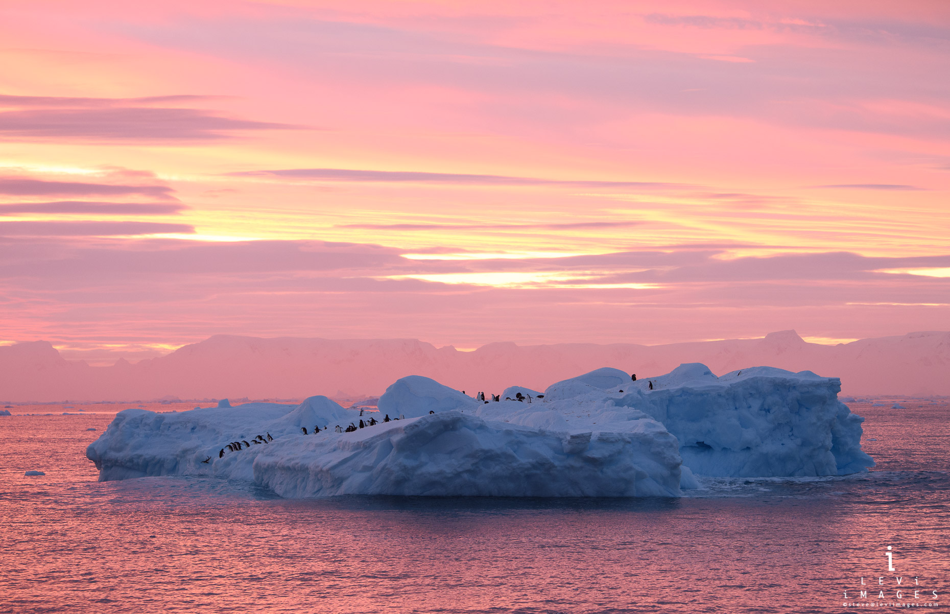 Penguins on iceberg at sunrise. Antarctic Sound, Antarctica