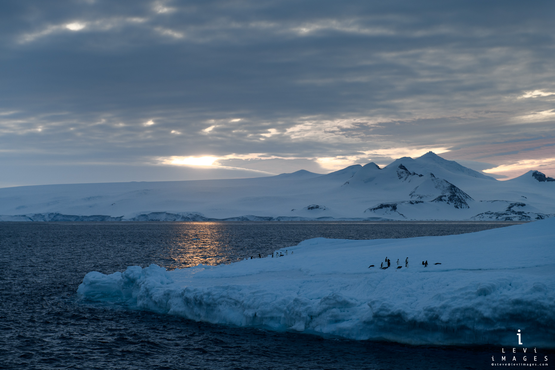 Penguins gather on iceberg as the sun sets. Antarctica